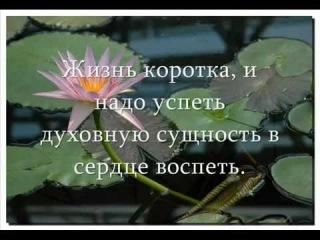 Анастасия Новых - Афоризмы из книги 'Сэнсэй'.mp4