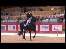 Edward Gal (NED) & Glock´s Undercover - EquitaLyon  - Dressage RLM Lyon 20111102 Equitalyon