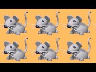 Малышам - Хопла Белая Зайка -188