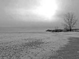 Griefrain - in the grey shroud of sky