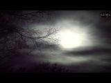 Griefrain ~ 'In the grey shroud of sky'