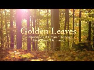 Soft, Peaceful, Inspiring Background Music Instrumental --