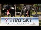 Приключения русского парашютиста в Тайланде