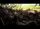 В дебрях Латинской Америки.3. Венесуэла. Сокровища Эльдорадо.2012 HD.mp4