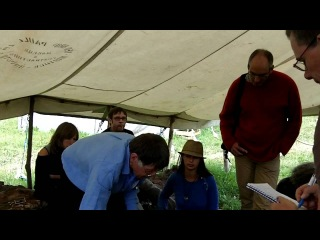 The Warré Hive at the Natural Beekeeping Conference