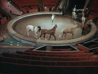 Дрессировщики. Фильм четвертый «Скачки». (1976)