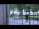 История Боба и Нины ( Однажды в Ростове )