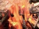 Как разжечь сырые дрова - Доброе утро - Первый канал