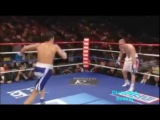 Sergio Martinez highlights- Still Standing (HD)