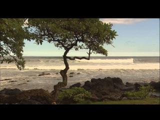Живые Пейзажи Гавайские Острова Full HD