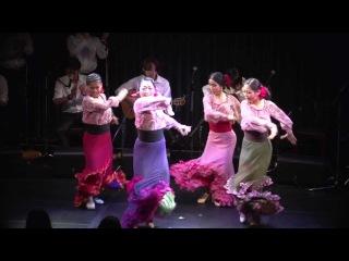 Flamenco Documentary(Yuka Imaeda 2012)-Full Ver. (今枝友加 「iREMA!」完全版)