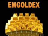 видео-презентация бонусной программы EMGoldex-2 часть