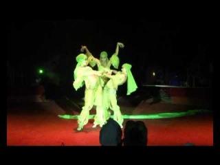 Выступление шоу D-ARTS в Цирке Никулина.Восток