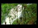 Шикарнейший рекламный ролик. Напоминает, что природу нужно беречь.