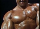BODYBUILDING THE GOLDEN AGE OF MUSCLE MR OLYMPIA 1986 THE OLYMPIANS 1983 - 3