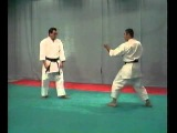 Karate Shotokan - BUNKAI ( JION )