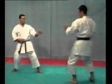 Karate Shotokan - BUNKAI  (  EMPI )