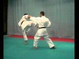 Karate Shotokan - BUNKAI   ( BASSAI SHO )