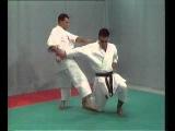 Karate Shotokan - BUNKAI  (  BASSAI DAI )
