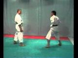 Karate Shotokan - BUNKAI   ( JITTE )