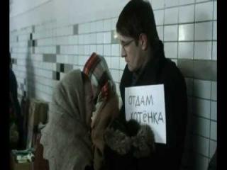 Отдам котят в хорошие руки (комедия, мелодрама, 2013)