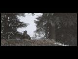 Pantha Du Prince (feat Panda Bear) - Stick To My Side