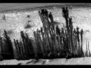Марсианский лес. Секреты НАСА.