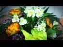 Салон цветов ГАЛАНТУС.mp4