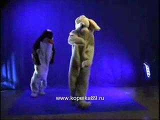 Супер танец зайца и пингвина! )).wmv