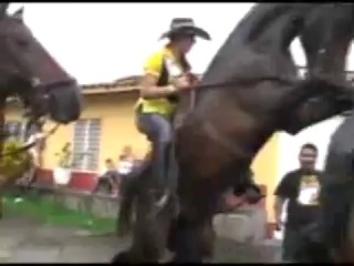 Буйный конь под девкой