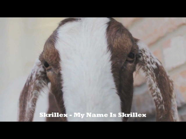 Ultimate Goat Edition Dubstep [GoatStep] Compilation Podcast