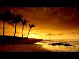 Pat The Cat - Hotel California (Feat Rachel Moreau)