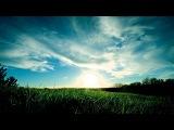 Markus Schulz feat. Ana Criado - Surreal (Omnia Remix)