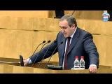 Выступление Сергея Неверова на парламентской десятиминутке