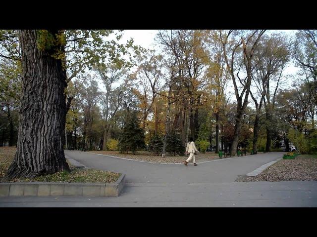 FAT [Молдавский Фильм] [Русская Версия]
