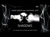 Going Deeper feat. Blackfeel Wite - Shadows (Jacsun Remix) SNIPPET RECORDINGS.mp4