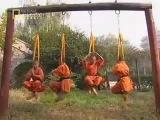 Shaolin Monks - Qi Gong