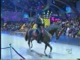 Guinness World Record di Gregory Ancelotti con il cavallo Doc