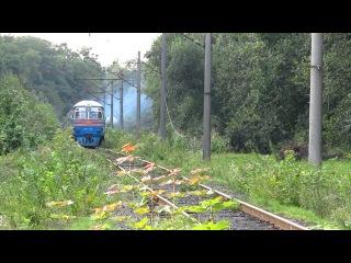 Дизель-поезд ДР1А-180