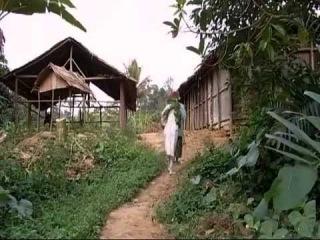 Ибога: обряд посвящения. Фильм (2004)