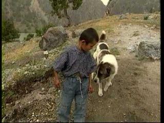 Сладкая родина, фильм Орзу Шарипова Таджикистан,1999,рус (Ватане Ширин - Шинэ Вэтэн)