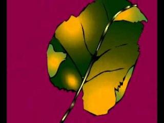 Работа устьиц листа растения