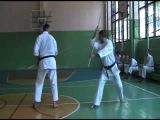 Bo-Jutsu - kata & bunkai practice #2. July, 2011.