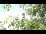 Виталий Шокин - Небесный телефон (сл.прот.В.Жохова)