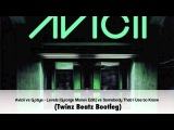 NEW Avicii vs Gotye - Reverse Levels vs  Somebody Used to Know (Twinz Beatz Bootleg)