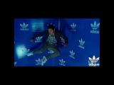 mvnvel_rvm video