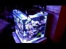 Nanoreef 60l, LED DIY 24x Cree @ 700mA