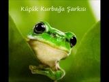 Küçük Kurbağa Çocuk Şarkısı (Little Frog Song)