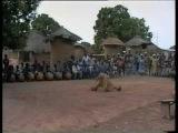 Senoufo traditional dances: M'Boloi & Balafon