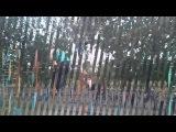 уличный спорт Белин 2012 ТУРНИКИ И БРУСЬЯ           STREET WORKOUT